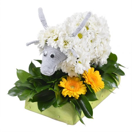 Bouquet Goat
