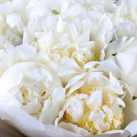 Bouquet White peonies
